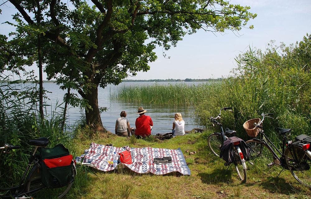 Organizzare un picnic in bicicletta